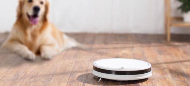 Какой лучше выбрать робот-пылесос Xiaomi
