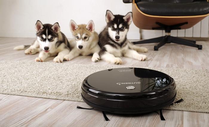 Собаки и робот-пылесос